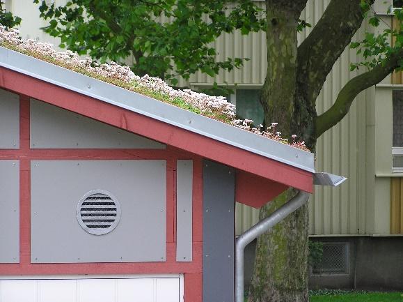 Lutande hustak med blommor som växer på taket
