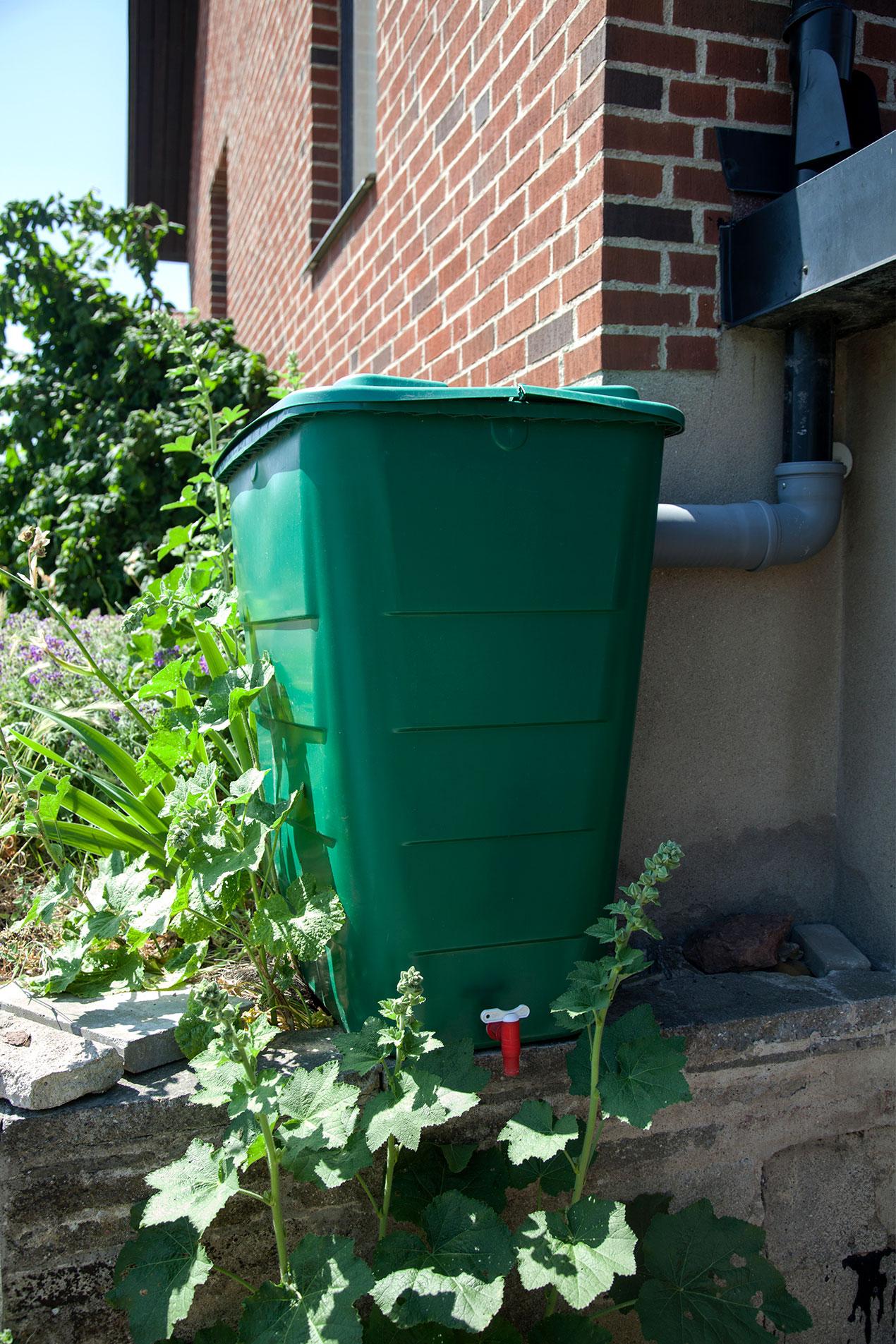 grön tunna i plast står på en mur, stuprör går in i tunnan