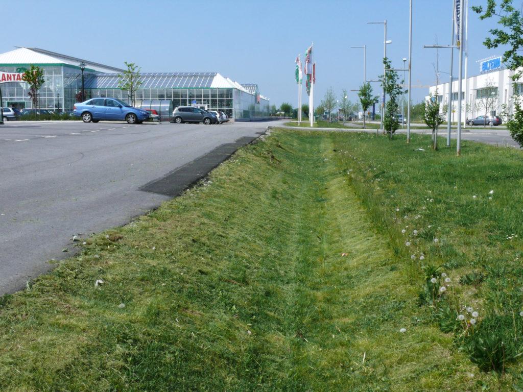 Gräsdike vid sidan av en asfalterad parkering
