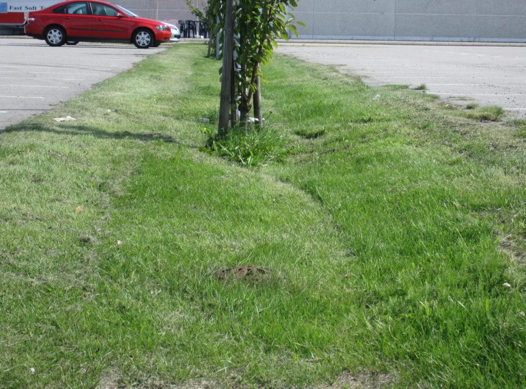 skålformad gräsremsa mellan stora asfaltparkeringar